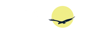 Moonbird Studios, Website Design Newport RI
